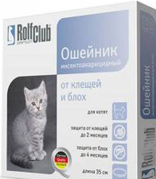 Эффективное средство от блох у кошки в домашних условиях 637
