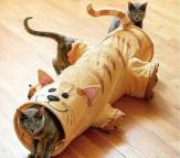 игрушечный домик для кошки