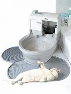 туалет котенка